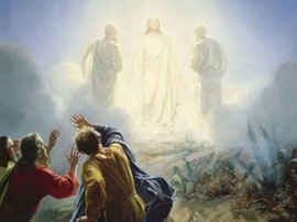 Transfiguracionint
